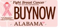Joy to Life Fight Breast Cancer Car Tag